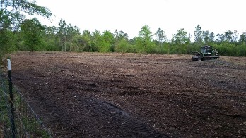 Land Clearing Lot Clearing Brush Clearing Forestry Mulching Gyro